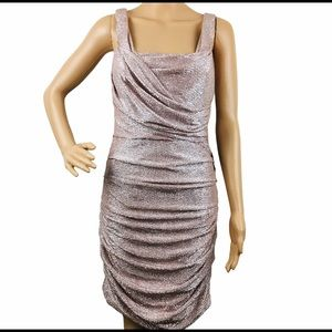 Express Shimmer Cocktail Party Dress(read)